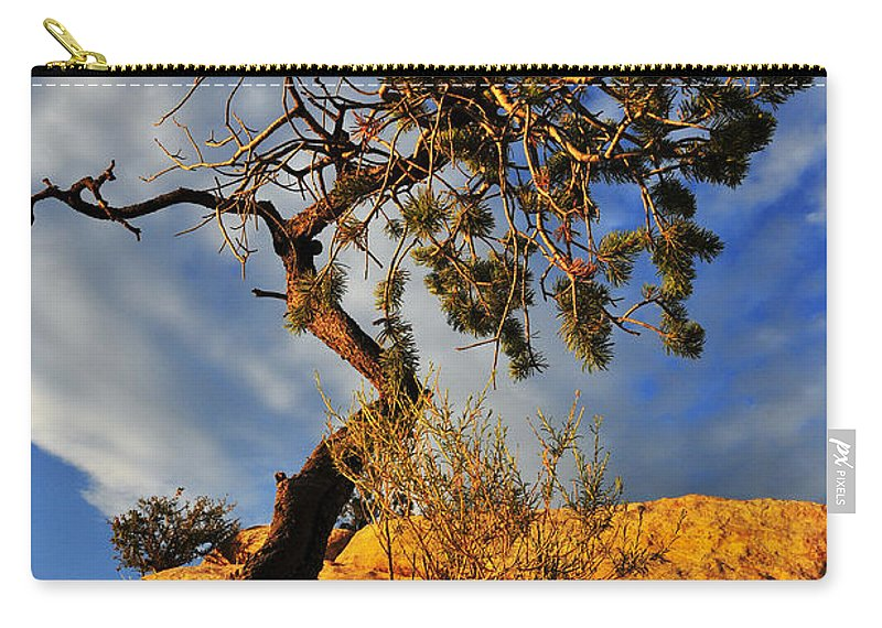 Dusk Dance Carry-all Pouch featuring the photograph Dusk Dance by Skip Hunt