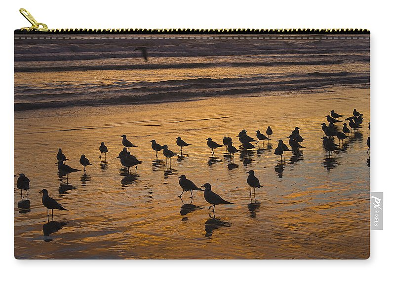 Beach Ocean Seagull Gull Bird Birds Sand Wave Waves Sun Sunrise Reflection Shaddow Sky Cloud Carry-all Pouch featuring the photograph Eager Anticipation by Andrei Shliakhau