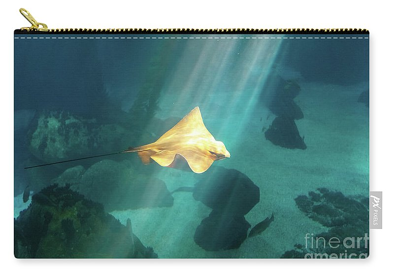 Underwater Carry-all Pouch featuring the photograph Eagle Ray Underwater by Benny Marty