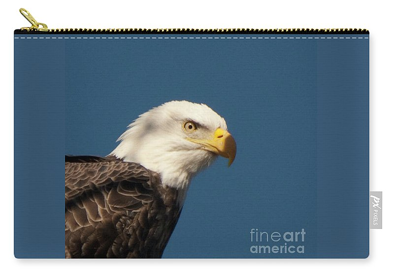 Eagle Carry-all Pouch featuring the photograph Eagle by Rod Wiens