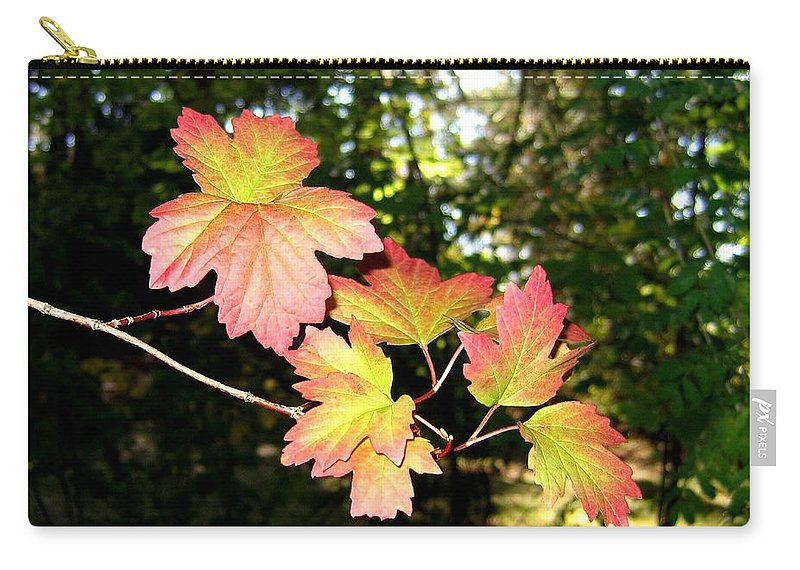 Autumn Carry-all Pouch featuring the photograph Early Days Of Autumn by Will Borden