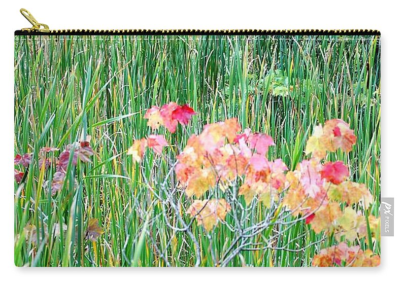 Digital Photograph Carry-all Pouch featuring the photograph Early Fall Color by David Lane