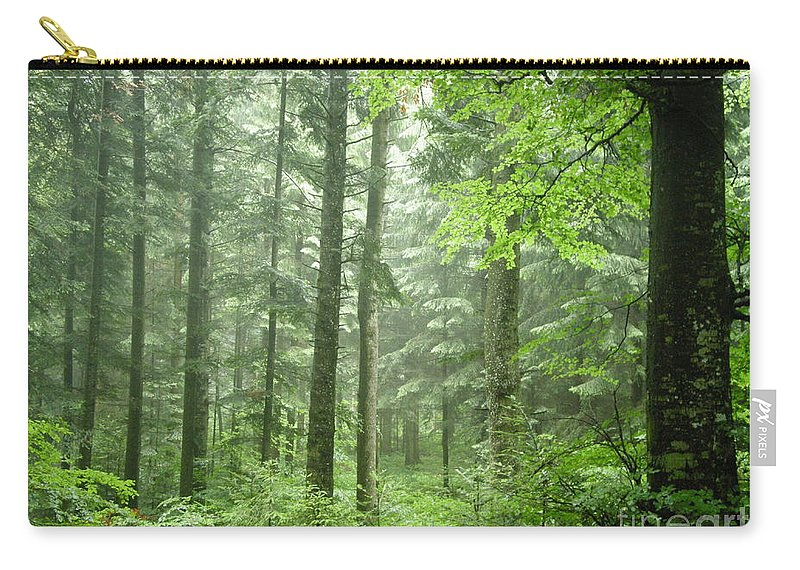 Nature Carry-all Pouch featuring the photograph Early Morning In Swiss Forest by Mikhael van Aken