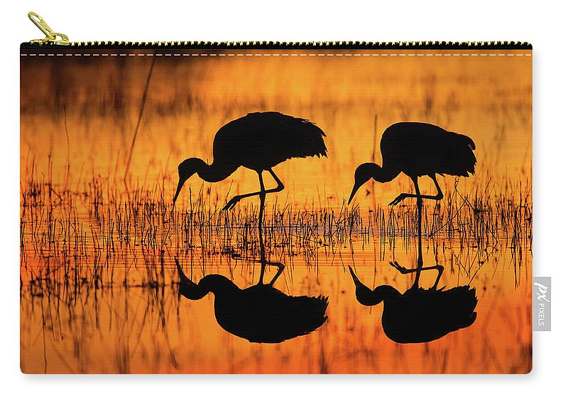 Crane Carry-all Pouch featuring the photograph Early Morning Sandhill Cranes by Christopher Ciccone
