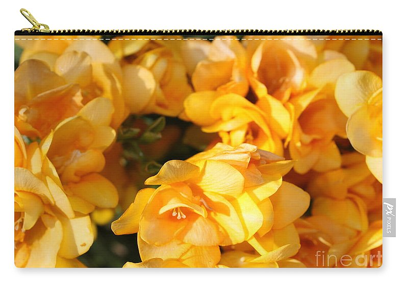 Spring Garden Carry-all Pouch featuring the photograph Easter Beauties by Carol Groenen