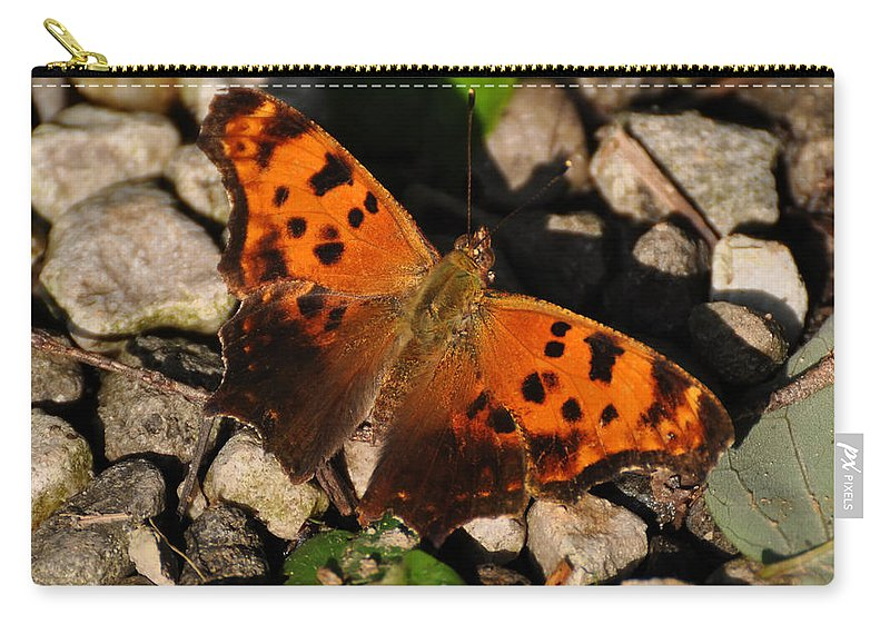 Eastern Comma Carry-all Pouch featuring the digital art Eastern Comma Butterfly by Chris Flees