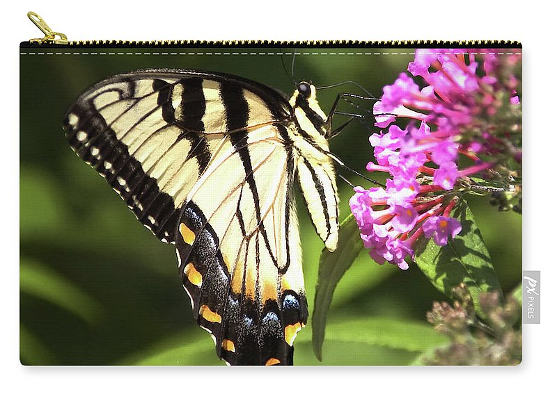 Foal Carry-all Pouch featuring the photograph Eastern Triger Swallowtail by Eric Noa