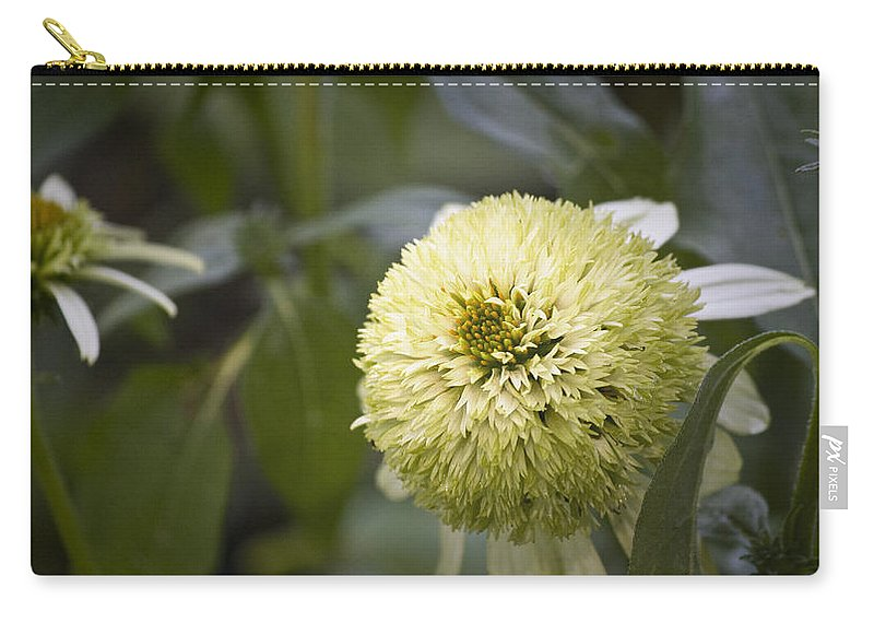 Photographs Carry-all Pouch featuring the photograph Echinacea Milkshake by Teresa Mucha
