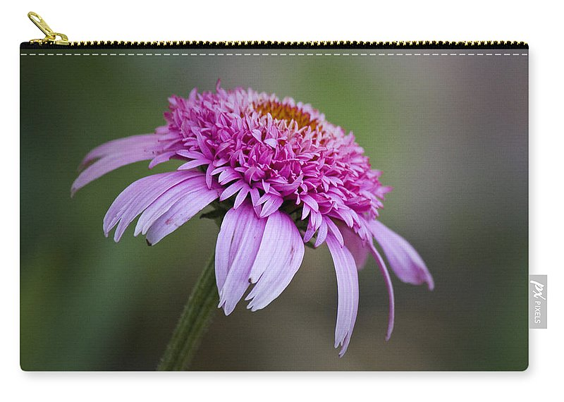 Pink Carry-all Pouch featuring the photograph Echinacea Pink Double Delight by Teresa Mucha
