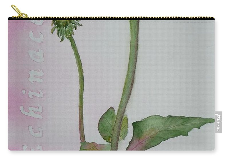 Flower Carry-all Pouch featuring the painting Echinacea by Ruth Kamenev