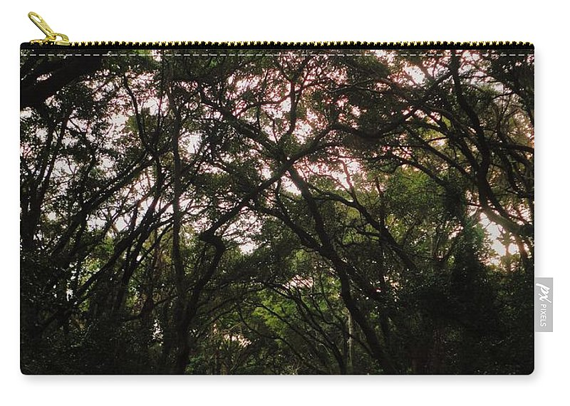South Carolina Carry-all Pouch featuring the photograph Edisto Island by Benjamin Yeager