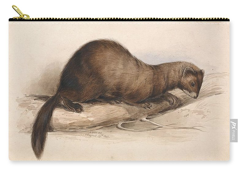 Art Carry-all Pouch featuring the painting Edward Lear - A Weasel by Edward Lear
