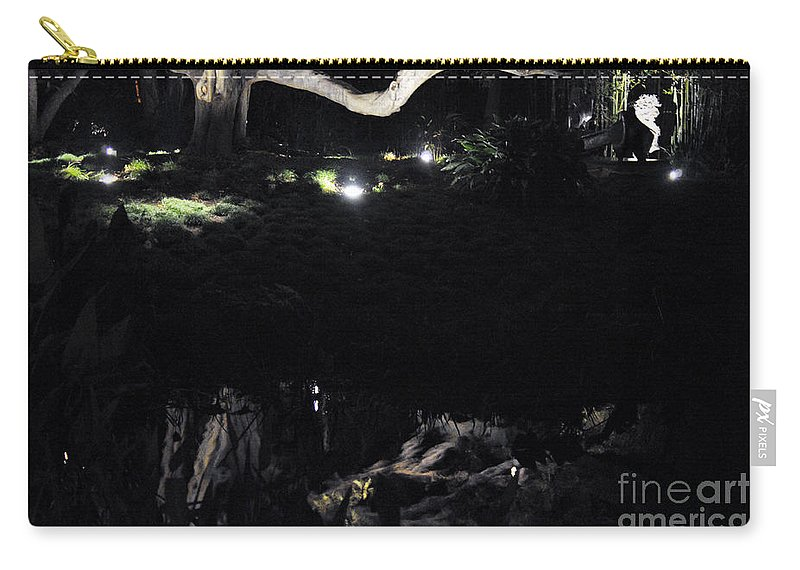 Clay Carry-all Pouch featuring the photograph Eery Reflections by Clayton Bruster