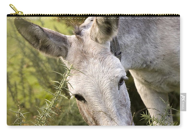 Donkey Carry-all Pouch featuring the photograph Eeyore by Angel Ciesniarska