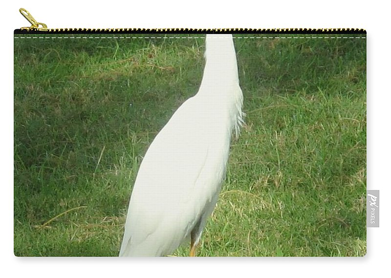 Egret Carry-all Pouch featuring the photograph Egret Posing by Ian MacDonald