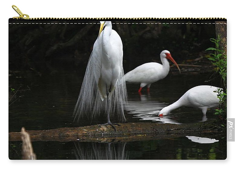 Great White Egret Carry-all Pouch featuring the photograph Egret Reflection by Barbara Bowen