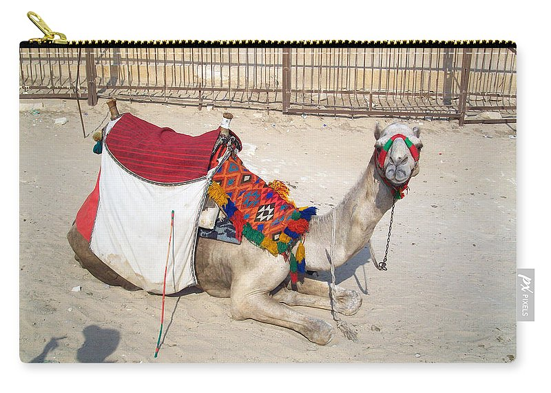 Egypt Carry-all Pouch featuring the photograph Egypt - Camel by Munir Alawi