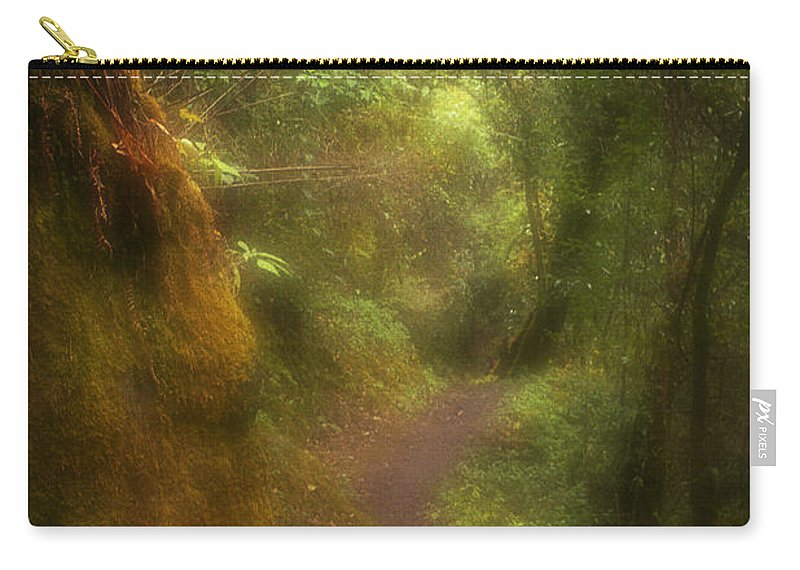 Path Carry-all Pouch featuring the photograph El Camino by Patrick Klauss