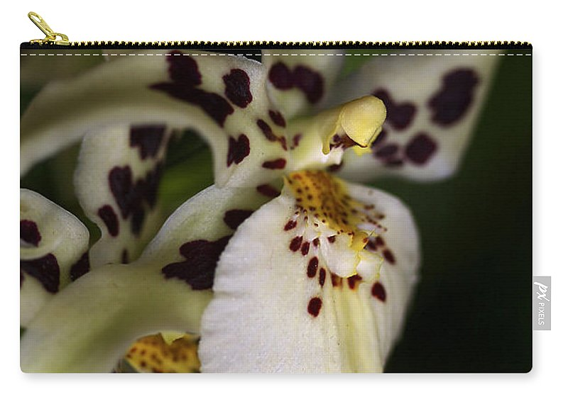 Flower Carry-all Pouch featuring the photograph Elegance by Deborah Benoit