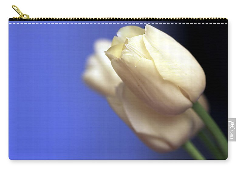 Tulip Carry-all Pouch featuring the photograph Elegance by Evelina Kremsdorf