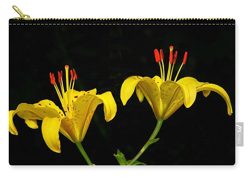 Flower Carry-all Pouch featuring the photograph Elegance by John Absher