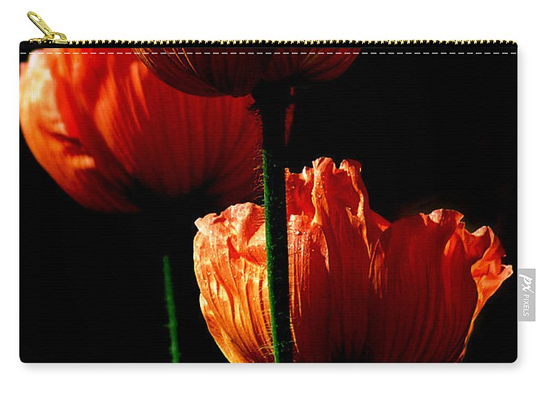 Photograph Carry-all Pouch featuring the photograph Elegance by Stephie Butler