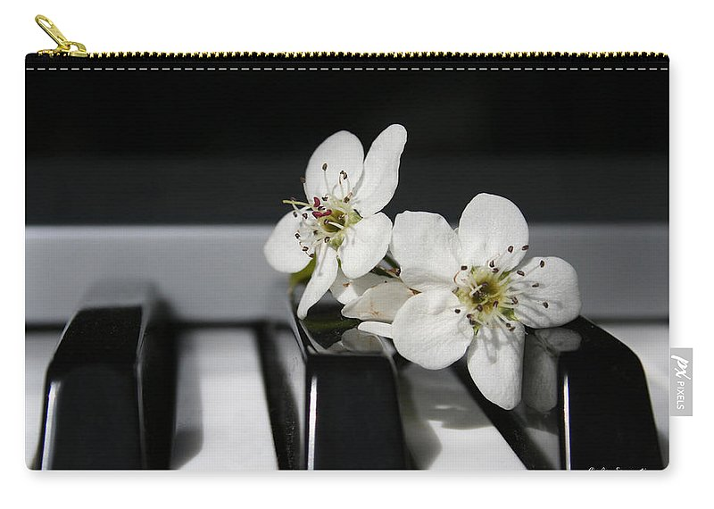 Still Life Photography Carry-all Pouch featuring the photograph Elegant by Linda Sannuti