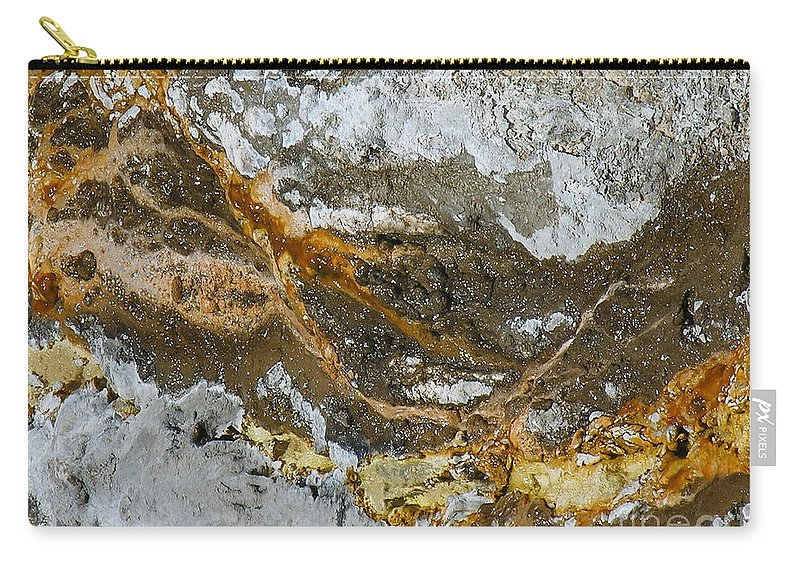 Elements Carry-all Pouch featuring the photograph Elements by Diane Greco-Lesser