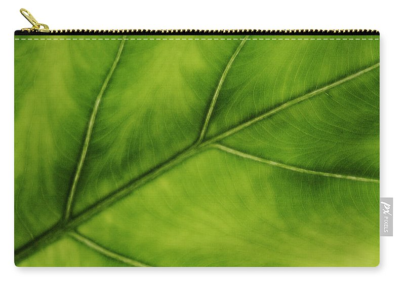 Leaf Carry-all Pouch featuring the photograph Elephant Ear by Marilyn Hunt