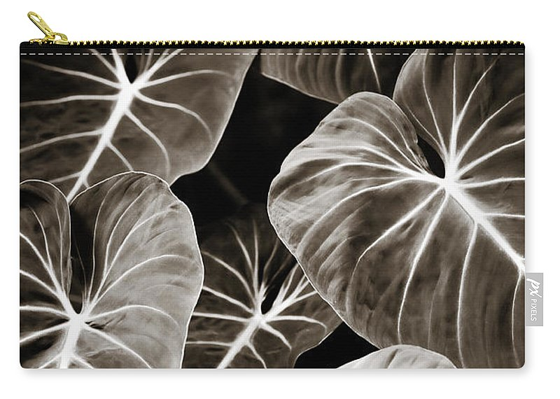 Elephant Carry-all Pouch featuring the photograph Elephant Ears on Parade by Marilyn Hunt