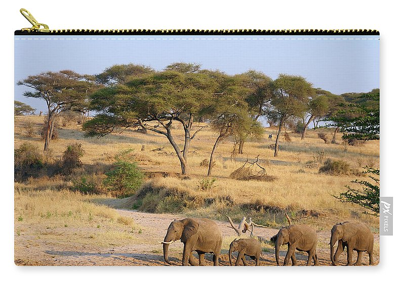 Elephant Carry-all Pouch featuring the photograph Elephant Family by Bruce Block