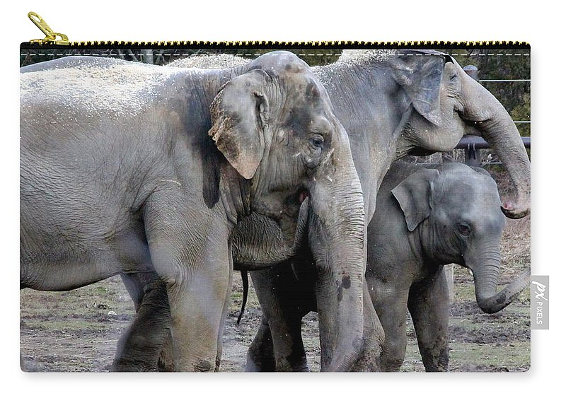 Asian Elephant Carry-all Pouch featuring the photograph Elephant Family by Laurel Talabere