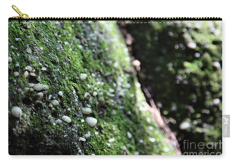Rocks Carry-all Pouch featuring the photograph Embedded by Amanda Barcon