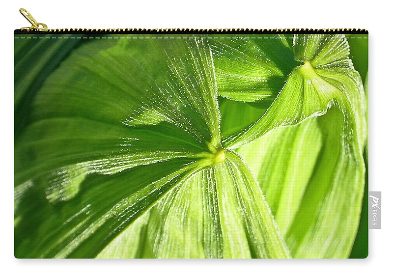 Plant Carry-all Pouch featuring the photograph Emerging Plants by Douglas Barnett