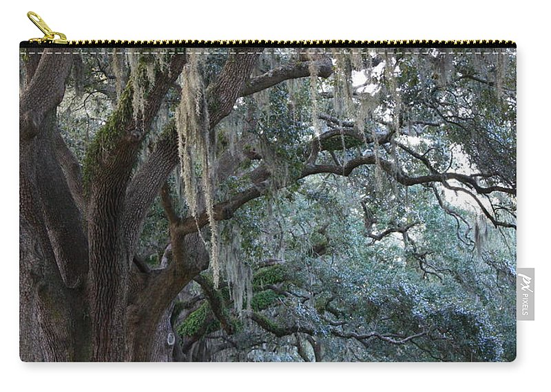 Carol Groenen Carry-all Pouch featuring the photograph Emmet Park In Savannah by Carol Groenen
