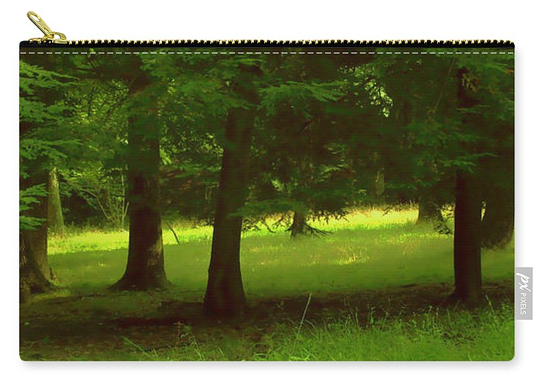 Nature Carry-all Pouch featuring the photograph Enchanted Forest by Linda Sannuti