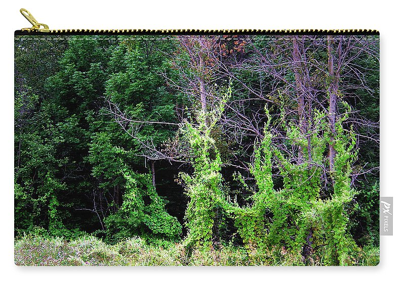 Pine Falls Manitoba Vines Landscape Carry-all Pouch featuring the photograph Enchanted by Joanne Smoley