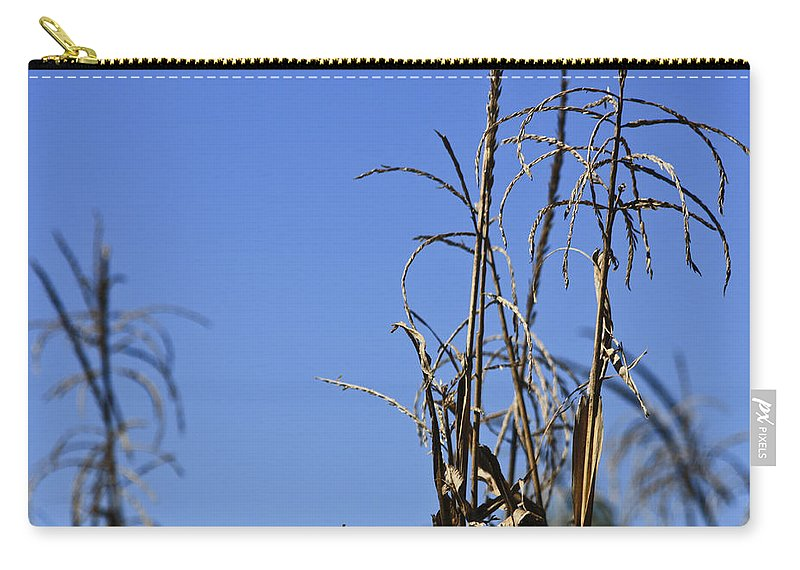 Corn Carry-all Pouch featuring the photograph End Of Season by Teresa Mucha