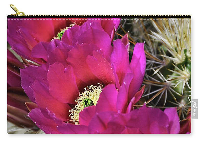 Arizona Carry-all Pouch featuring the photograph Engleman's Hedgehog Cactus by Saija Lehtonen