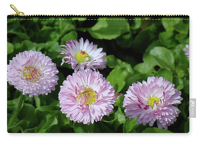 Flower Carry-all Pouch featuring the photograph English Daisies by Shirley Heyn