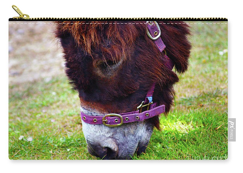 Fine Art Photography Carry-all Pouch featuring the photograph Enjoying The Sweet Irish Grass by Patricia Griffin Brett