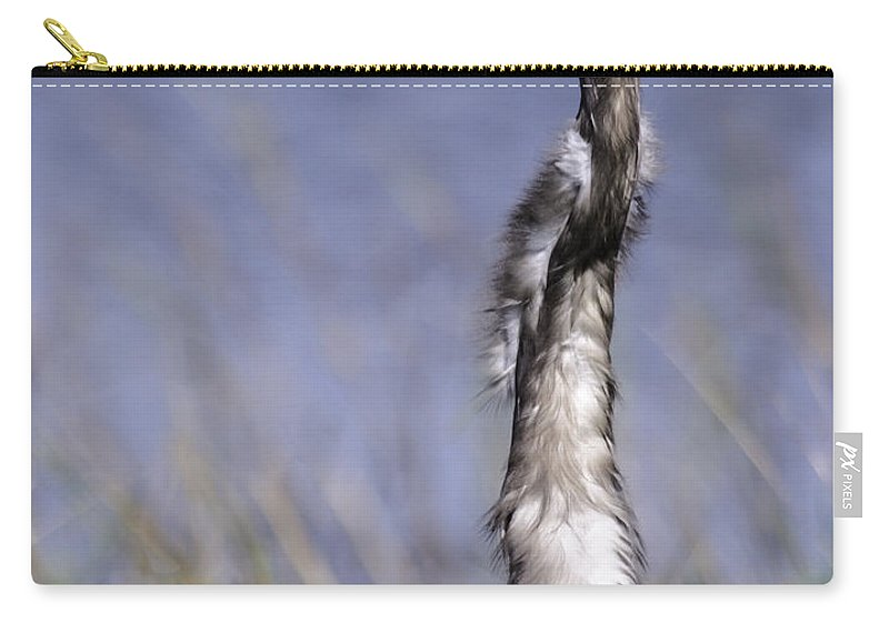 Bird Carry-all Pouch featuring the photograph Enjoying The View by Leticia Latocki