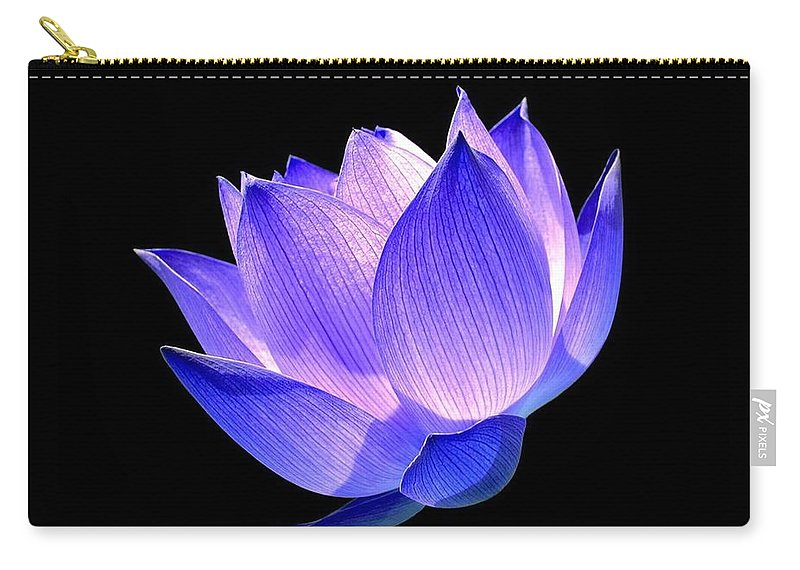 Flower Carry-all Pouch featuring the photograph Enlightened by Jacky Gerritsen