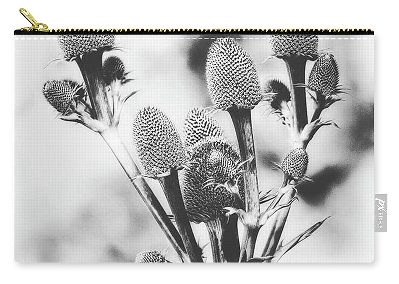 Beautiful Carry-all Pouch featuring the photograph Eryngium #flower #flowers by John Edwards