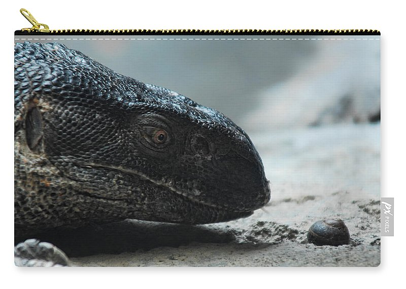 Lizard Carry-all Pouch featuring the photograph Escargot by Donna Blackhall
