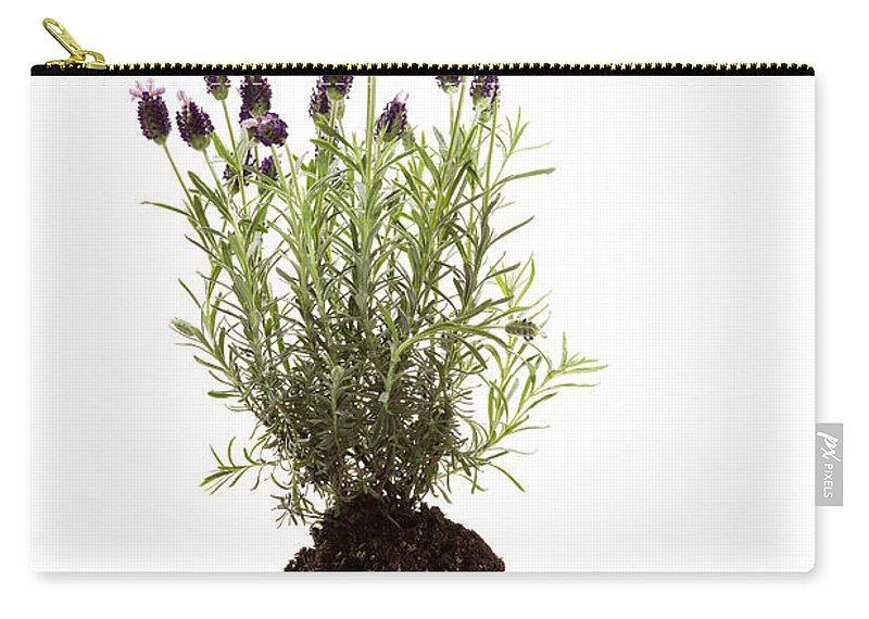Ethereal Carry-all Pouch featuring the photograph Essential Oil Of Spanish Lavender by Wolfgang Steiner