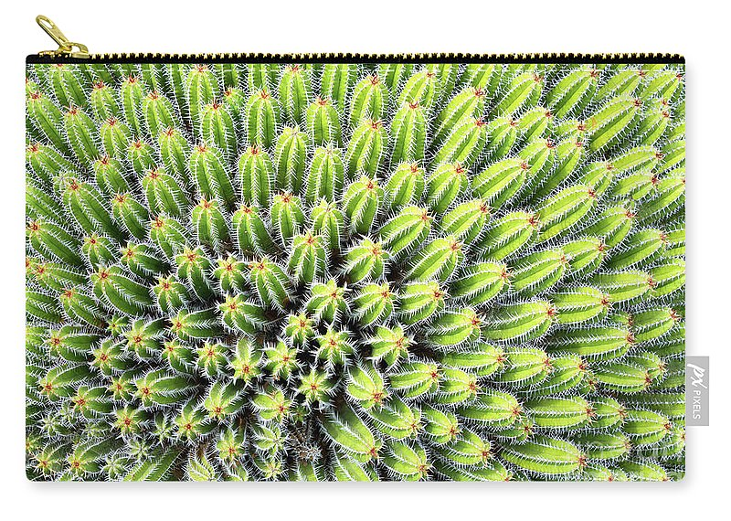 Cactus Carry-all Pouch featuring the photograph Euphorbia by Delphimages Photo Creations