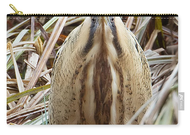 Bittern Carry-all Pouch featuring the photograph European Bittern by Bob Kemp
