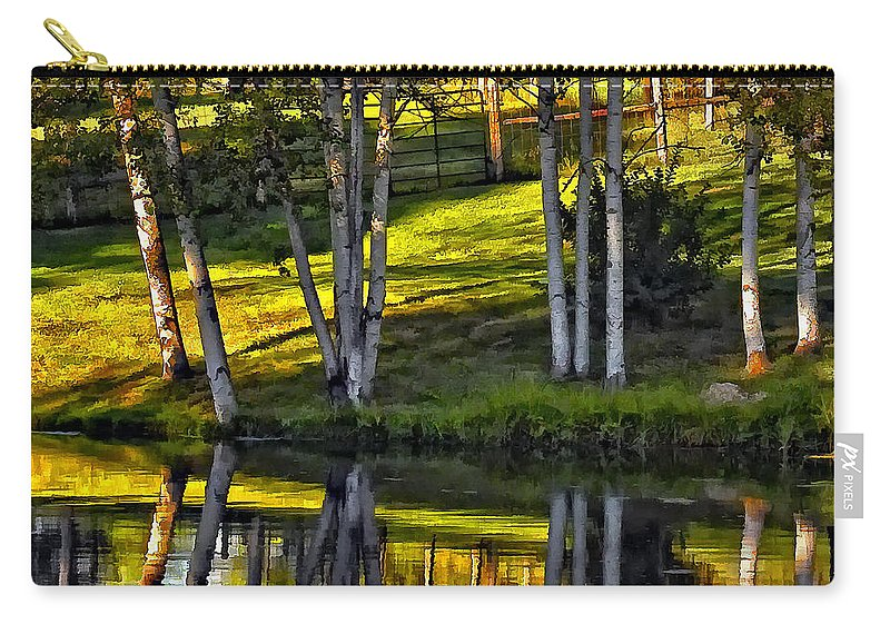 Evening Carry-all Pouch featuring the photograph Evening Birches by Steve Harrington