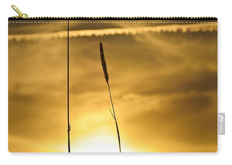 Background Carry-all Pouch featuring the photograph Evening Grass01 by Svetlana Sewell